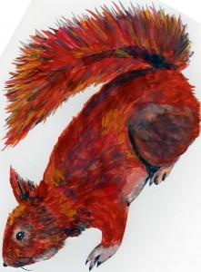 wiewiórka (plakatówki)