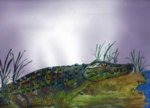 Niedokończony krokodyl (plakatówi)