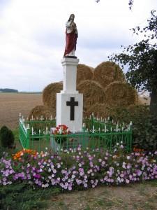 Słupia k. Poznania, wrzesień 2008r.