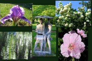 Ogród botaniczny 14 maja 2009r