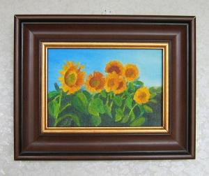 Słoneczniki 2009r