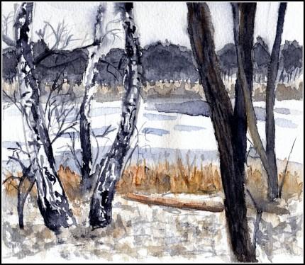 Jezioro Góreckie, grudzień 2009r.
