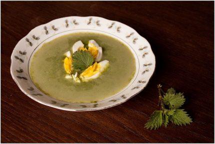 zupa z pokrzyw 2016